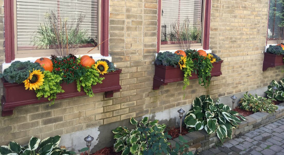 fall_planter_boxes_h_cr