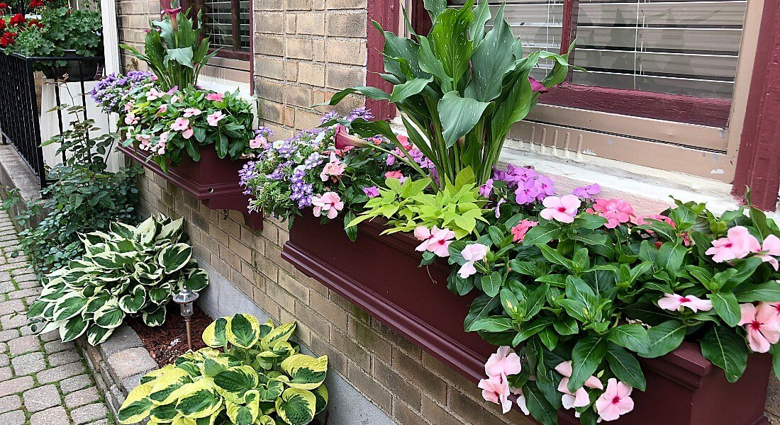 springwindowboxes