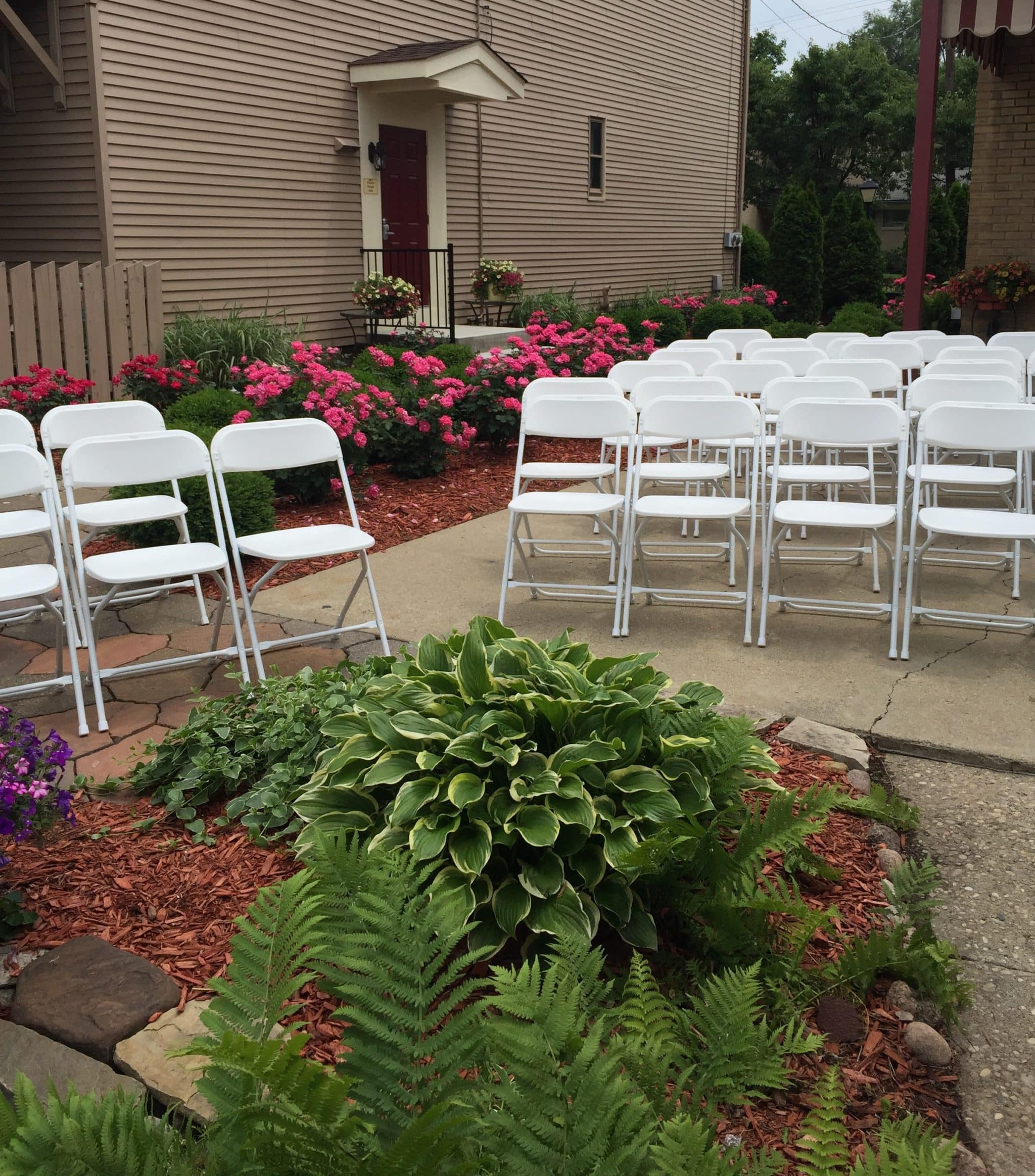 white chairs sitting among pink roses and green plants