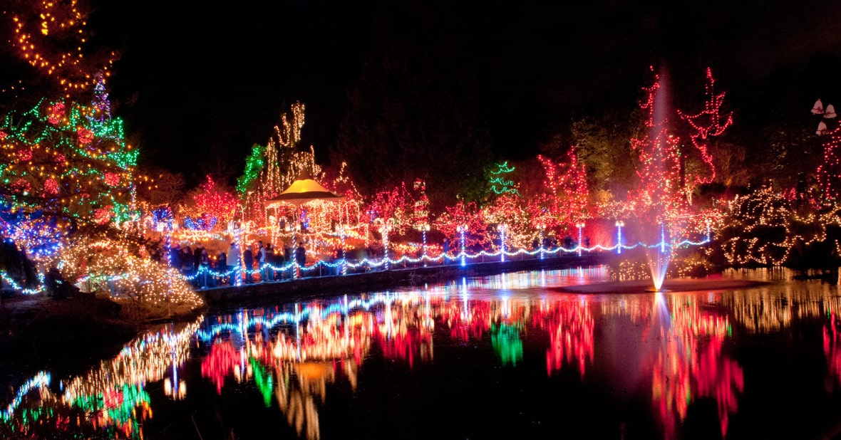 Lake reflecting trees with red, green, blue, yellow and white tiny lights