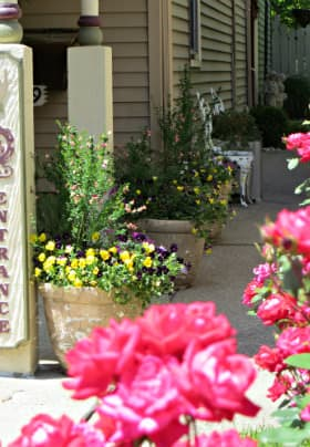 Front porch with a vertical entrance sign, pink rosebushes and three pots of purple, yellow and pink flowers