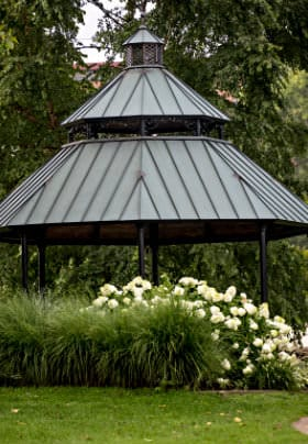 Park with octagon shaped gazebo, tall grasses, large white hydrangea bushes and weeping pine trees